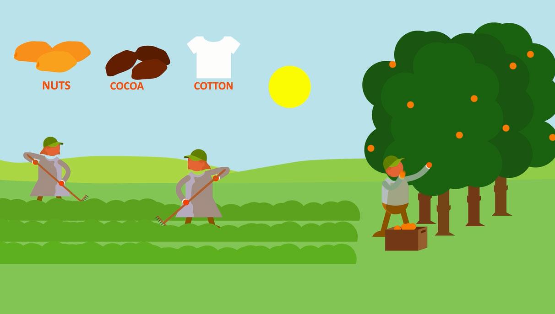 Smallholders_animation_ChainPoint.jpg
